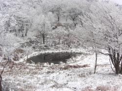 赤ゾレ山の下にある池