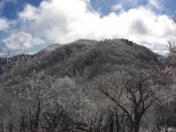 馬駈ヶ辻から見る国見山