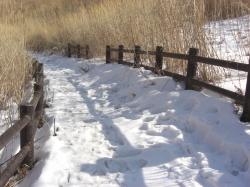 雪は硬く、しかも溶けてきてます