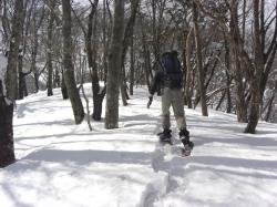 雪が深く そして重い!