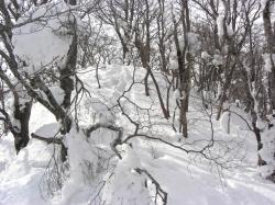 山頂近くの雪はけっこうサラサラ