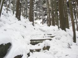 終盤の階段・・・