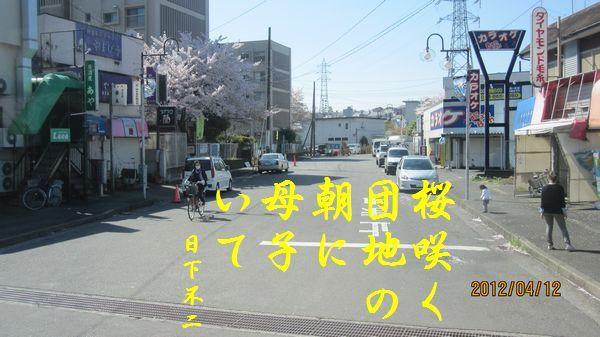 0412sakura11