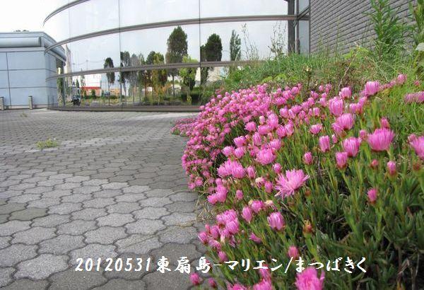 0531higashi08