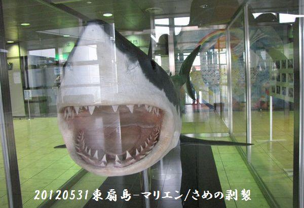 0531higashi09