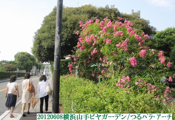 0608flower09