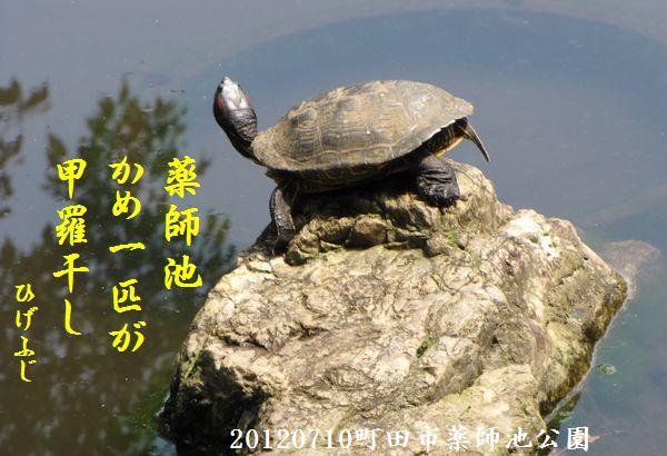 0710yakushi06