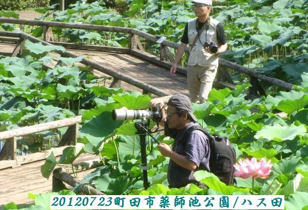 0723yakushi24