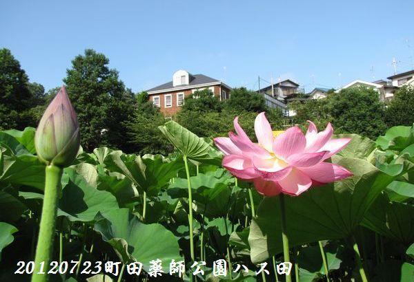 0723yakushji12