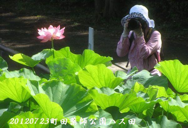 0723yakushji20