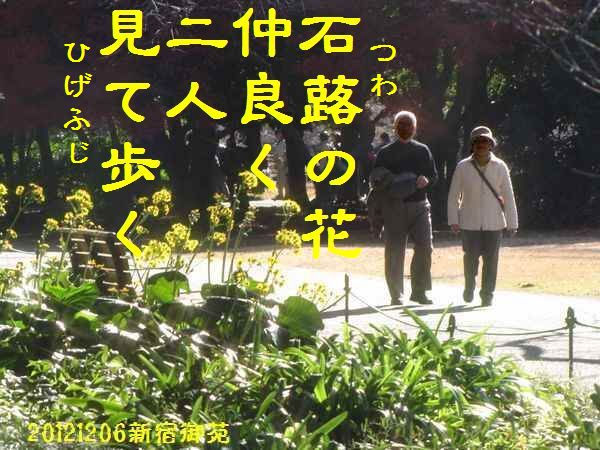 1206fuyuku-01.jpg