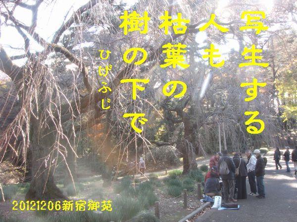 1206fuyuku-04.jpg