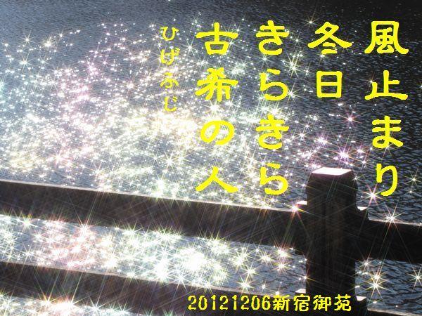 1206fuyuku-06.jpg