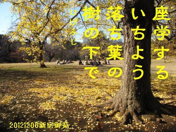 1206fuyuku-07.jpg