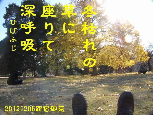 1206fuyuku-08.jpg