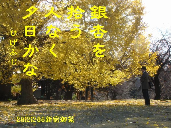 1206fuyuku-09.jpg
