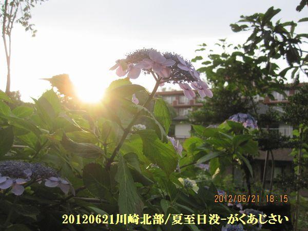 2012geshi05