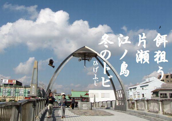 enoshima28