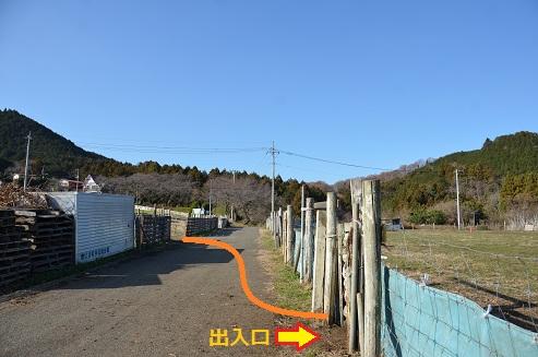 DSC_9327.jpg