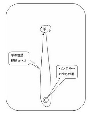 mini2.jpg