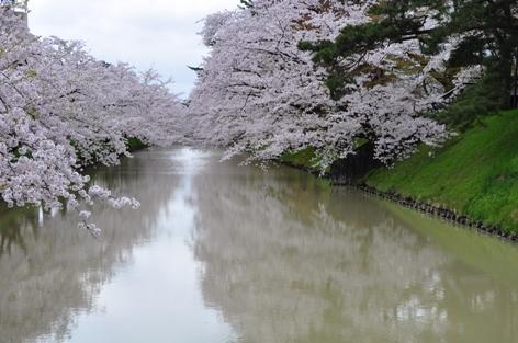 弘前公園①