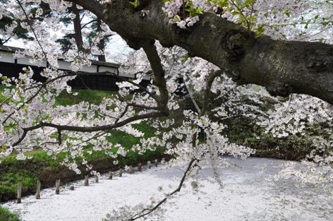 弘前公園⑤2
