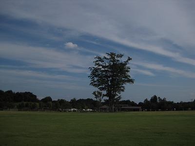 観音山ファミリーパーク01