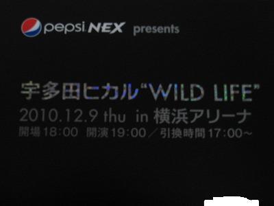 宇多田ヒカルコンサート WILDLIFE 横浜アリーナ チケット