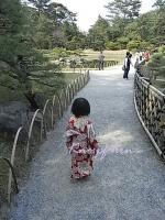 日本庭園を歩く芽キャベツ