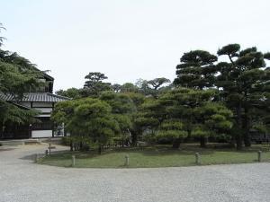 春蝉の鳴く松林