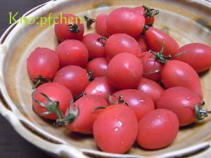 フルーツミニトマト