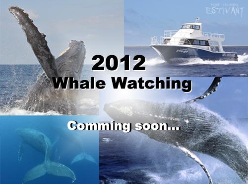 2012WW info 2
