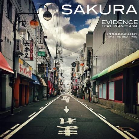 evidence-sakura-480x480.jpeg