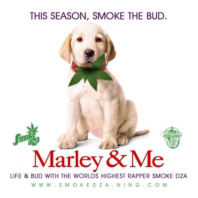 marley-cover-final.jpg