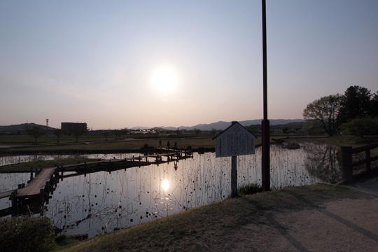 20110429_bicchu_takamatsu_castle-02.jpg