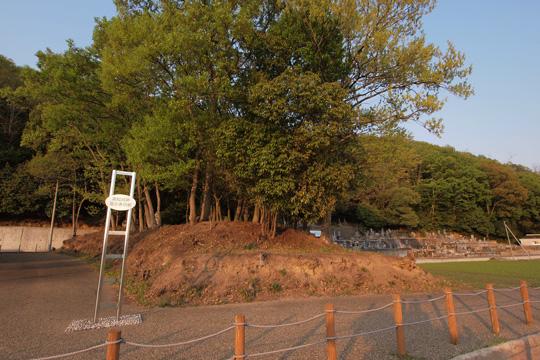 20110429_bicchu_takamatsu_castle-20.jpg