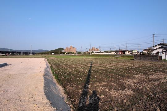 20110429_hattori-08.jpg