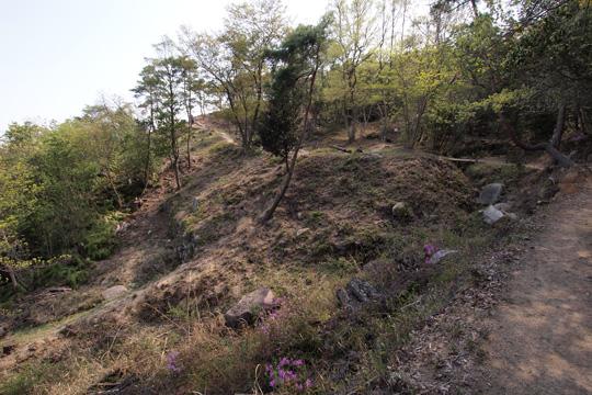 20110429_kinojo_castle-08.jpg