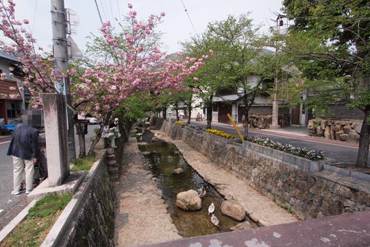 20110430_bicchu_takahashi-07.jpg