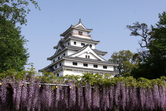 20110505_karatsu_castle-04.jpg