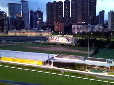 horse_race01.jpg