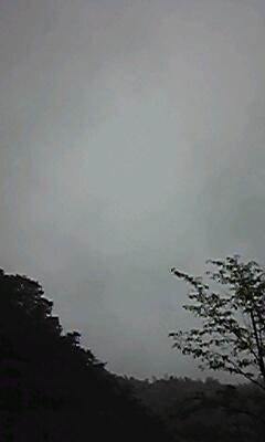 雨 24 8 11 ②