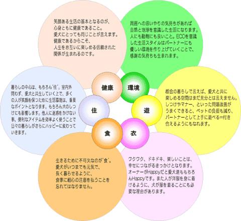 6_20120203111132.jpg
