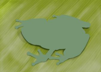 カエルの絵-01
