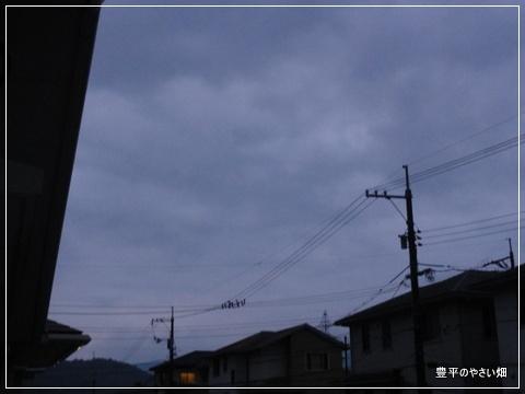 001-DSC09075-001.jpg