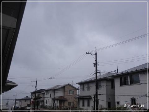 001_20121117193827.jpg