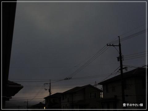 01-DSC09271.jpg