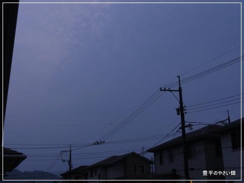 01-DSC09426.jpg
