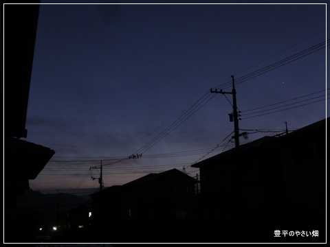 1-DSC00916.jpg