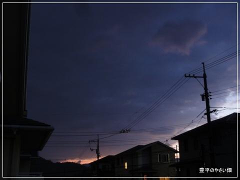 1-DSC00972_20121201200231.jpg